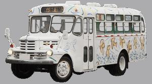 school bus camperizzato